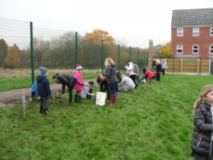 Parents helping to plant the new hedge.